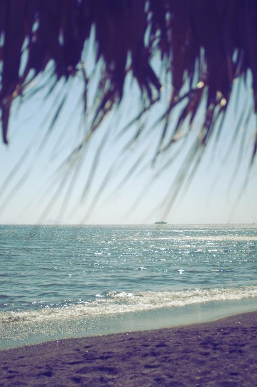 beach, delight blog, summer, ocean
