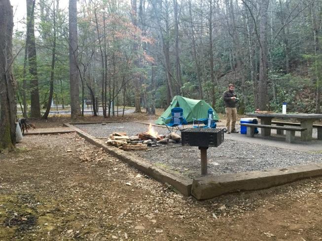 roan mountain camping